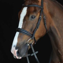 Collegiate Padded Raised Cavesson bridle in black