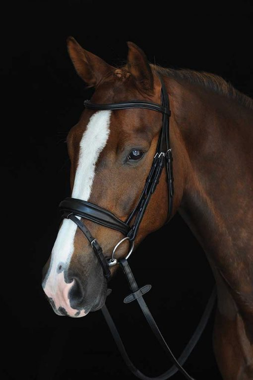 College Mono Crown Padded Raised Flash Bridle in black