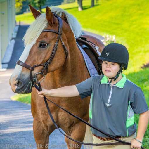 Collegiate ComFiTec training bridle in brown leather on palomino pony and girl in charles owen helmet