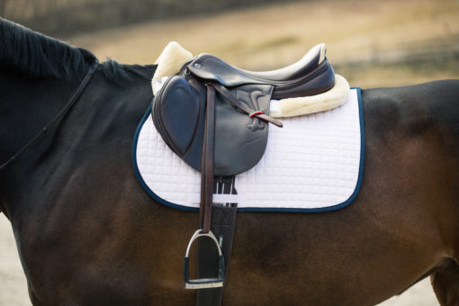 Horze River AP saddle pad white with peacock navy blue binding