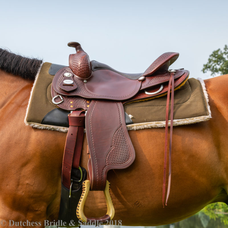 Crates Classic Trail saddle on a bay horse