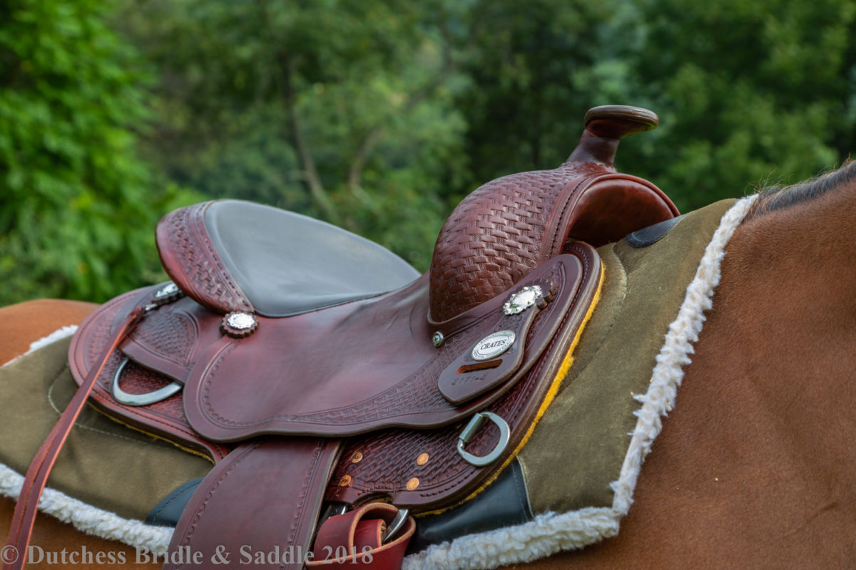 Crates Classic trail saddle on horse wooded background