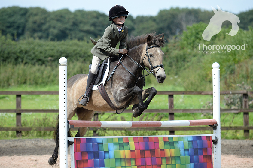 Thorowgood Saddles lifestyle banner, gray pony jumping