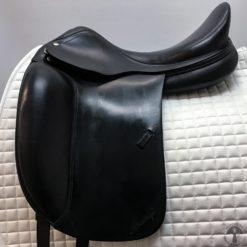 Amerigo Cortina Profile