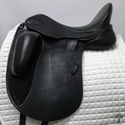 Veritas Eximo Dressage Profile 0785
