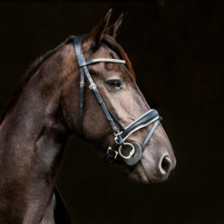 Horze Rohan Snaffle show bridle in black and white